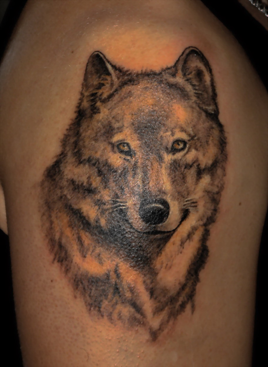 Красивые тату волка фото